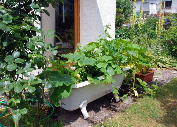 Garten Eckel